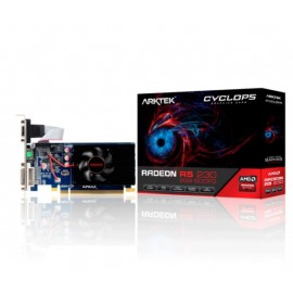 PLACA DE VIDEO ARKTEK RADEON R5-230 2GB